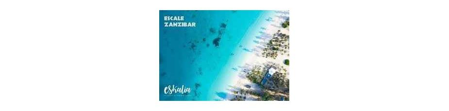 Zanzibar eskalia